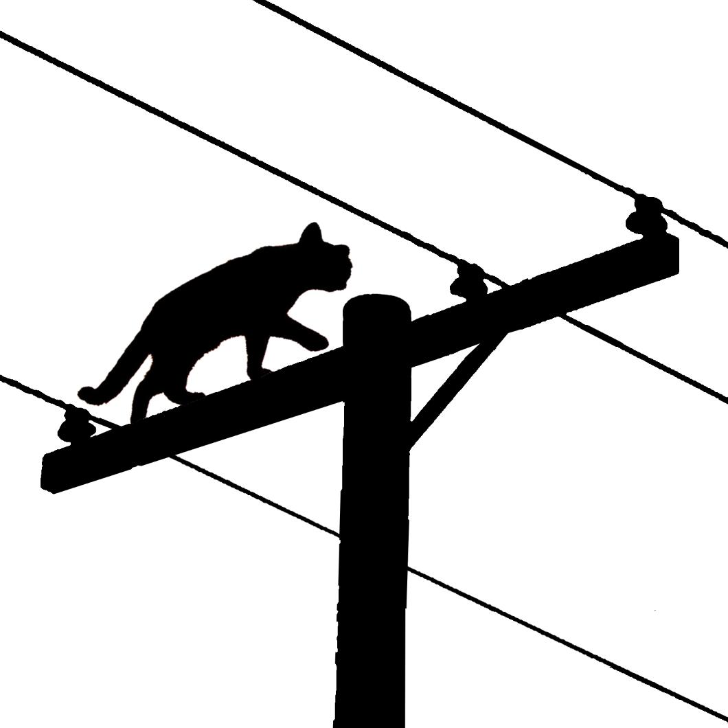 Catalyst Cooperative logo